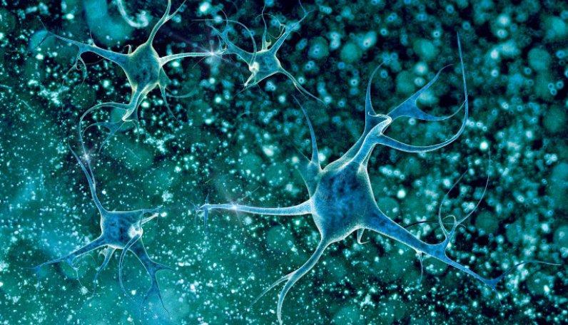 ALS'nin Tedavisinde Yeni Hedef, Üst Motor Nöronlar